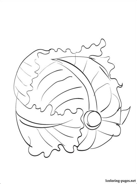 lettuce printable  coloring page coloring pages