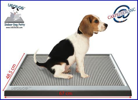 cassetta per cani ugodog lettiera wc sostituisce panno assorbente ebay