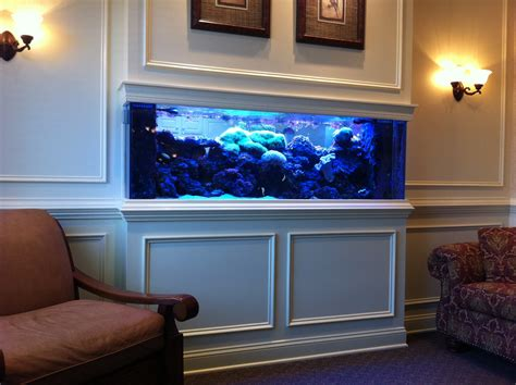 aquarium design ireland saltwater aquarium fish google search ideas for the