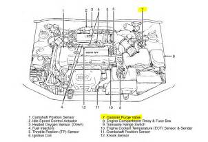 my 2003 elantra has the code p0441 what do i need to do