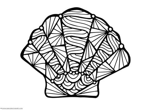 seashell color easy sea shell coloring coloring pages