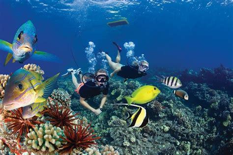 catamaran tour big island scuba diving and snorkeling in hawaii s big island and