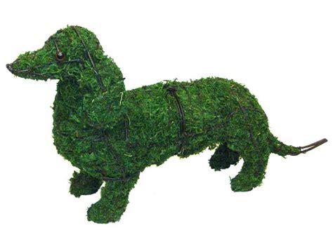 topiary frame dachshund garden topiary frame