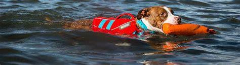 zwemvest hond k9 het ruffwear k9 float coat hondenzwemvest is kwalitatief