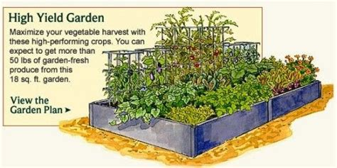 Small Vegetable Gardens Google Search Garden Plans Small Vegetable Garden Layout