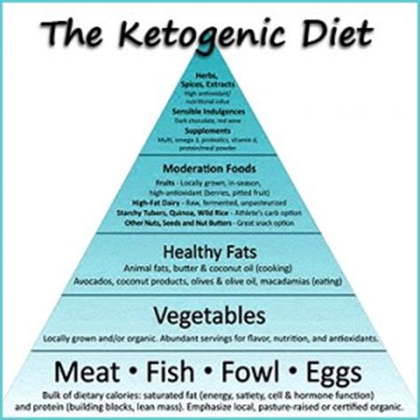 simply keto a practical approach to health weight loss with 100 easy low carb recipes books home professionalsupplementcenter