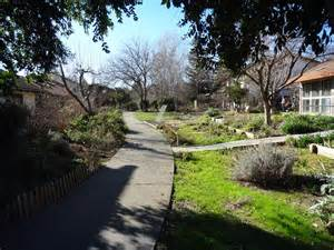 homes davis ca lush landscapes for tough climates