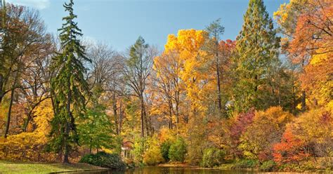 autumn s colors light up longwood gardens phillyvoice
