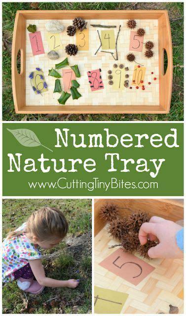 kindergarten activities nature 161 best images about nature activities on pinterest