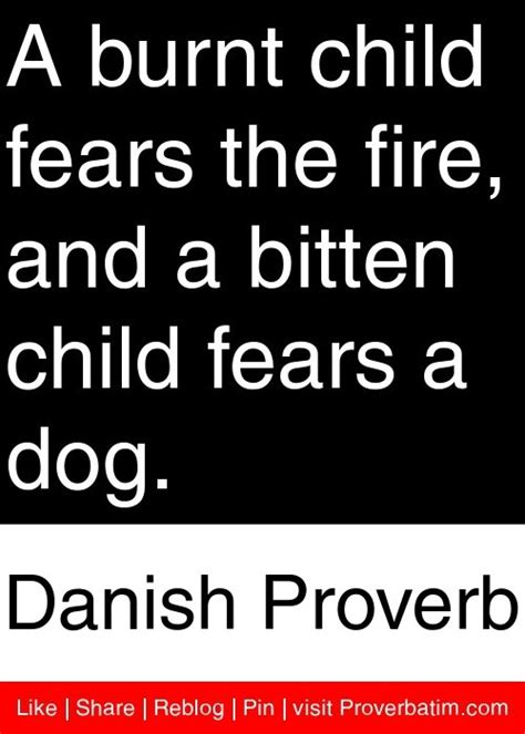 Jordans Fear For Burnt Child by 18 Best Proverbs Images On Proverbs