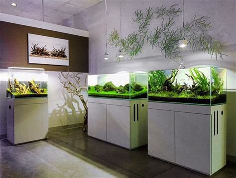 aquarium design group facebook photo editor editor and the o jays on pinterest