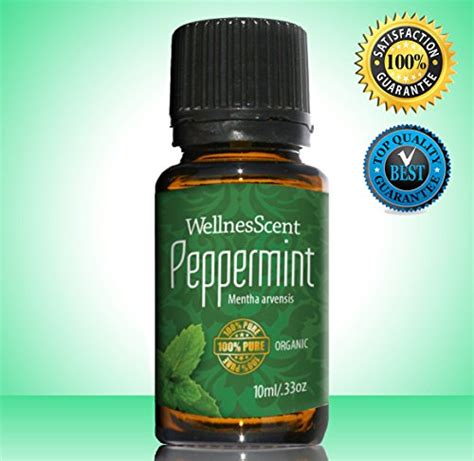 20 Ml Peppermint Essential 100 peppermint essential 100 organic therapeutic