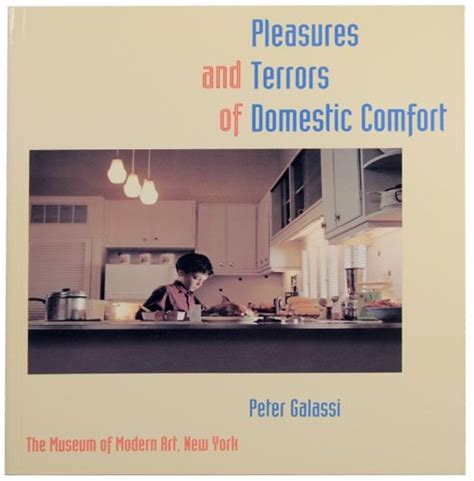 pleasures and terrors of domestic comfort pleasures and terrors of domestic comfort by doug dubois