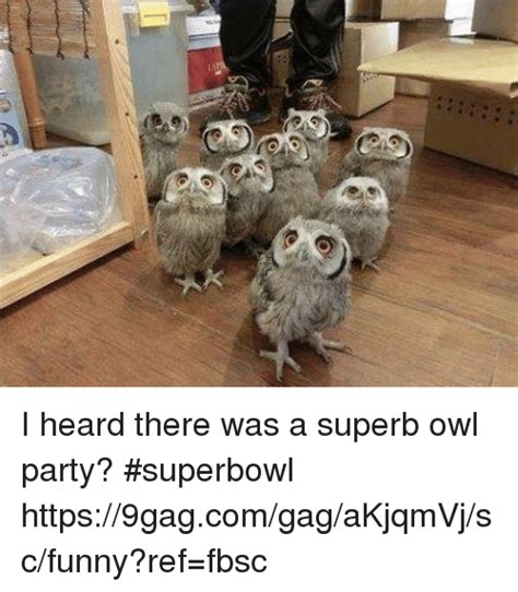 Superb Owl Meme - i heard there was a superb owl party superbowl
