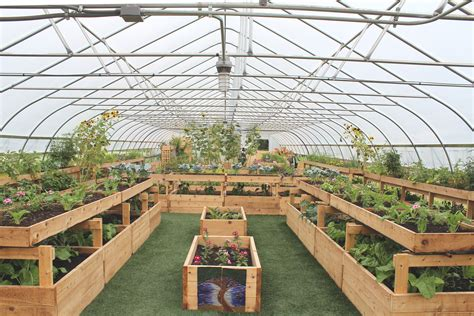 Inside Greenhouse Ideas File Interior Of A Hoop House On The Farm At Saint Joe S