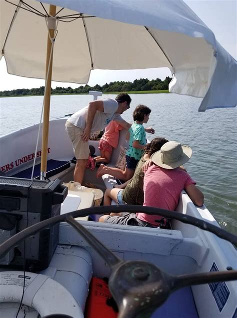 beaufort boat tours beaufort boat tours dolphin horse watch posts facebook