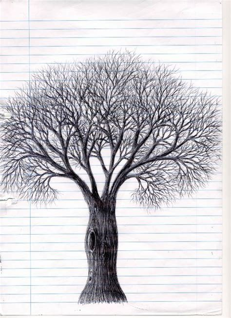 drawings of tree a biro drawing of a tree by nightshadeniki on deviantart