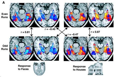 multi voxel pattern analysis neuroimaging limitations of mris for understanding behavior