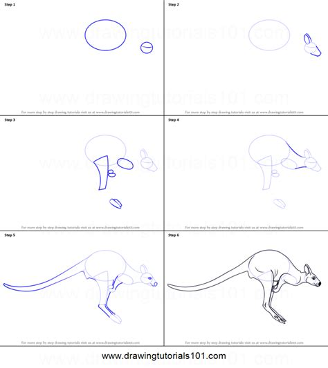how to draw a doodle step by step how to draw a kangaroo printable step by step drawing