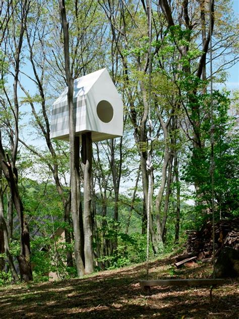 tree house bird apartment watching the birds treehouse