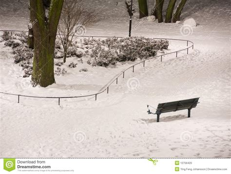 bench in snow bench in snow stock photo image 12756420