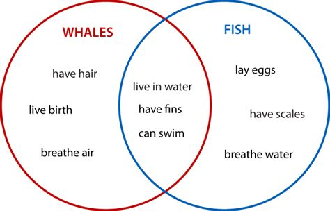 what s a diagram what is a venn diagram math 101