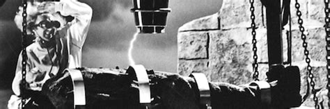 analysis of young frankenstein you can capture lightning in a bottle meaningful