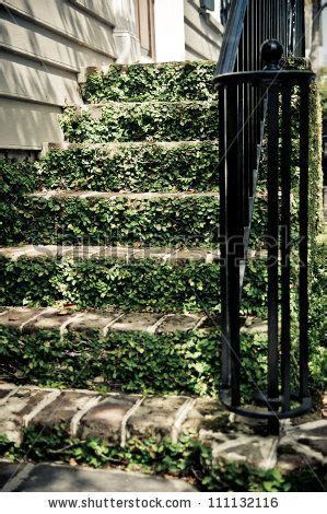 ivy staircase steunk pinterest ivy lodges and 17 best images about handrails on pinterest wall mount