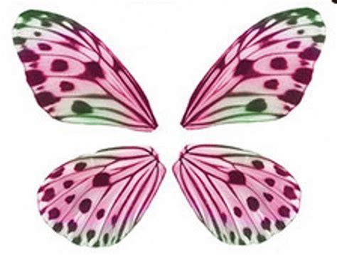 imagenes de mariposas para imprimir 17 best ideas about mariposas para imprimir on pinterest