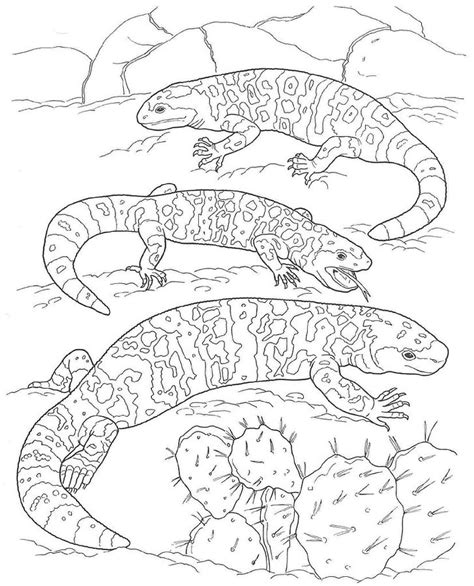 gila monster coloring pages skullcandy gila best free