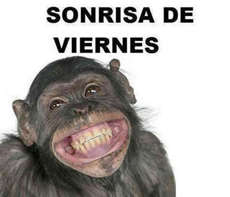 imagenes de feliz lunes para perfil de wasap memes d 237 a viernes el humor dedicado al mejor d 237 a de la