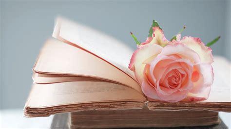 the roses books 书与鲜花唯美图图片