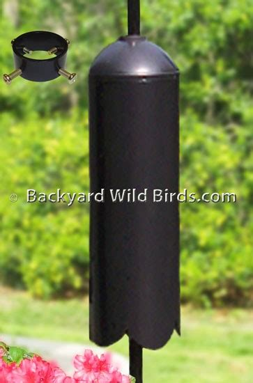 cylinder raccoon baffle for poles at backyard wild birds