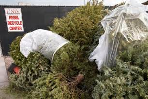 recycle that christmas tree news center university of