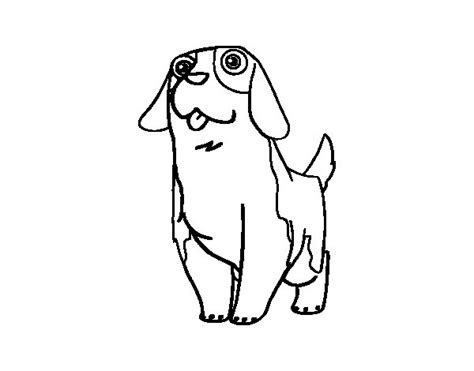 Free Coloring Pages Of St Bernard St Bernard Coloring Pages