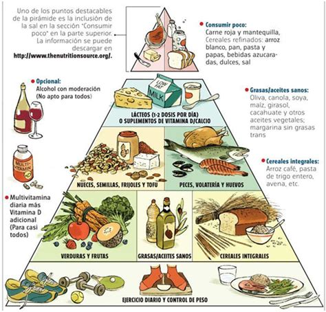 carbohydrates q significa file harvard food pyramid es jpg wikimedia commons