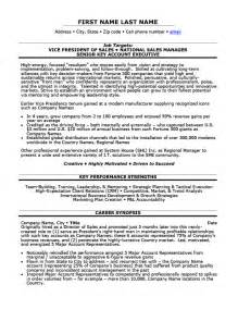 Vp Resume Sles by Vice President Of Sales Resume Template Premium Resume Sles Exle