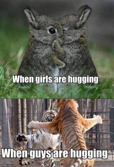 Cutest Animal Memes - best 25 cute animal memes ideas on pinterest cute memes