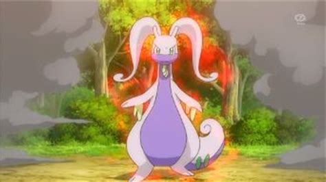 hydration goodra what if ash was a chion pok 233 mon amino