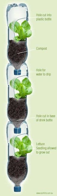 Jo In Hanging Water Bottle 28 best hydroponic systems images on