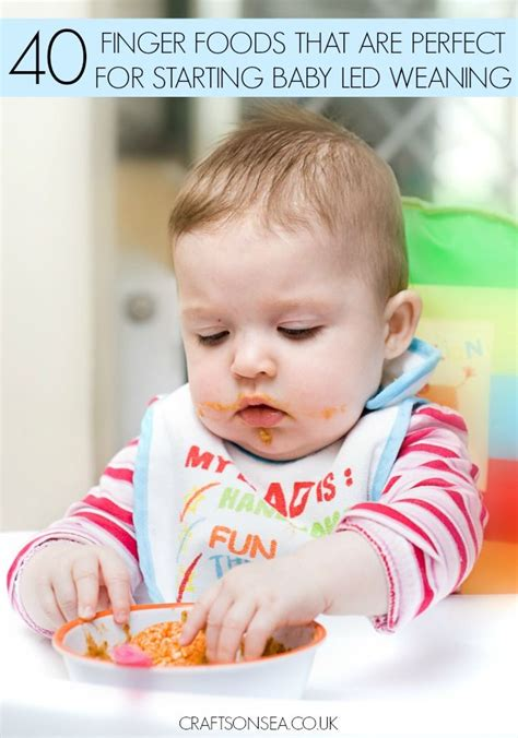 baby led weaning 70 841644983x 40 foods your baby can eat before they have teeth baby led weaning led weaning and finger foods