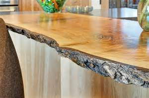 Tree Bar Top Contemporary Kitchen With Quartz Countertops And Birch