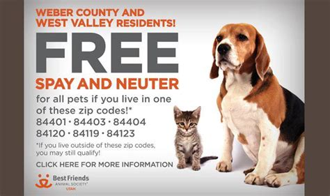 free neutering utah readers free spay neuter for select zip codes mamas on a dime