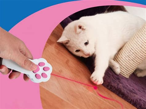 laser light for cats laser light pointer for cats free shipping