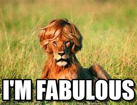 I Am Fabulous Meme - fabulous memes image memes at relatably com
