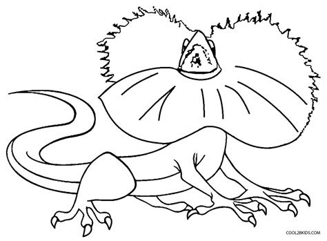 printable lizard coloring pages for kids cool2bkids