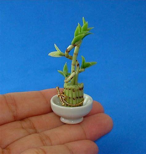 lucky bamboo plant dollhouse 1 12 scale