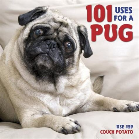 save a pug save 36 101 uses for a pug