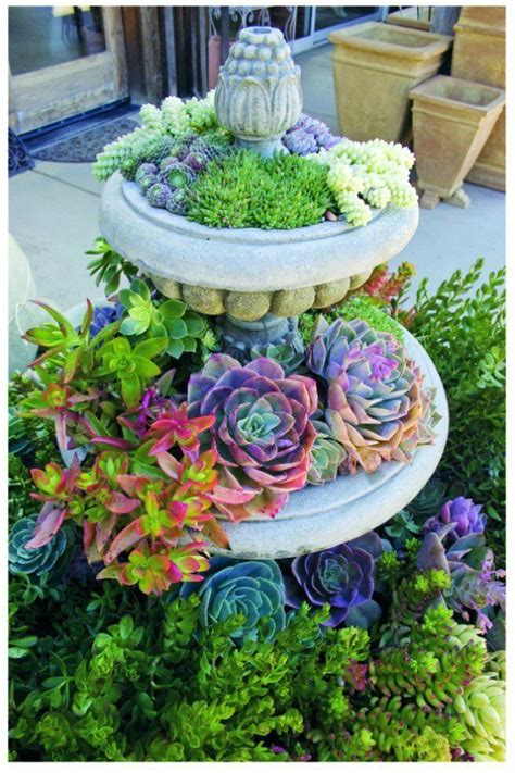 24 Cheap Planter Ideas For Amazing Succulent Garden Succulent Planter Ideas