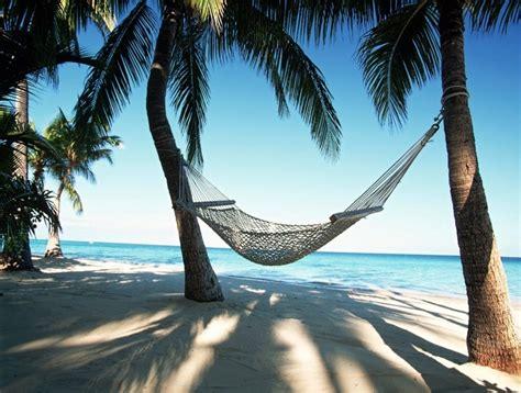 Hammock Palm Trees africa hammock luxury palm trees image 516831 on favim